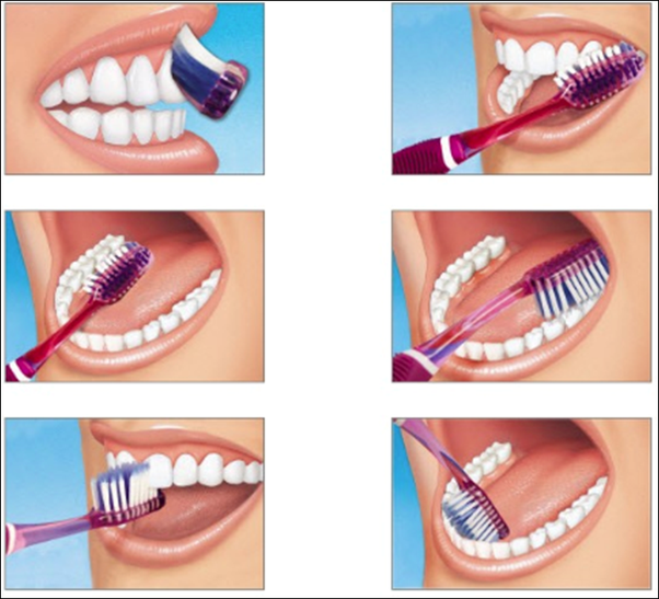 How to Properly clean your teeth